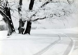 Snow-tracks, 2 low