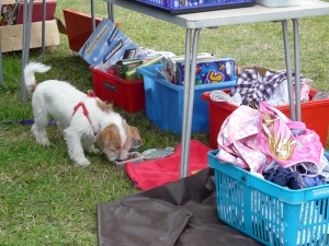 Carboot 1