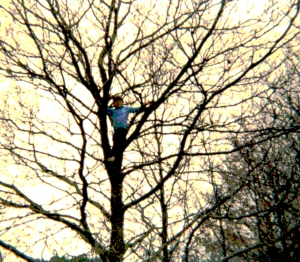 time ago, my son climbing a tree